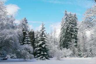 Brusno - kúpele-pobyt-Novoroční relax