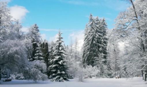 Novoroční relax -Liečebný dom Poľana - Brusno Kúpele 1153892789