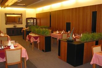 Hotel Maxim Svätý Jur 38740920