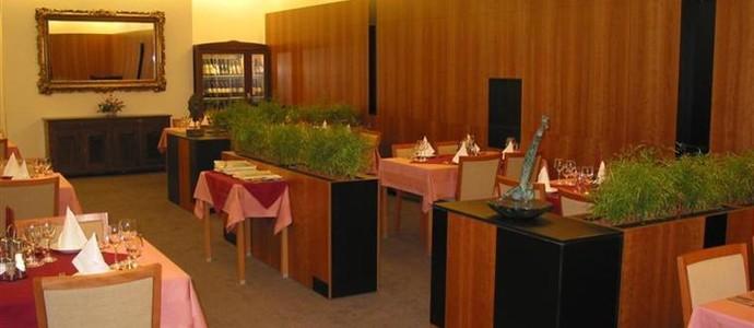 Hotel Maxim Svätý Jur 1118587776