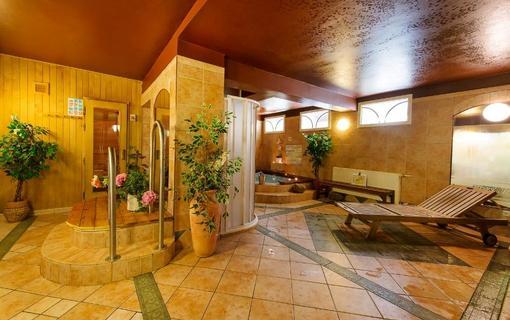 Alpský hotel+ vířivka a finská sauna