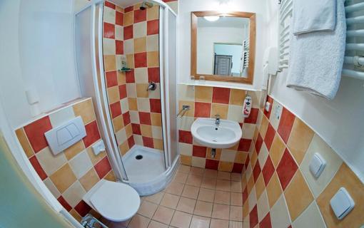 Alpský hotel+ pokojová koupelna