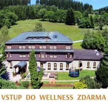 Alpský hotel+-Špindlerův Mlýn-pobyt-Pobyt v Alpském hotelu s polopenzí a wellness (2 noci)