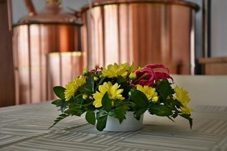 Hotel Bobík-Volary-pobyt-Prodloužený víkend plný relaxace s nápoji ALL INCLUSIVE