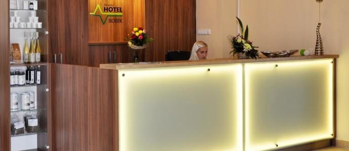 Hotel Bobík Volary 1111921480