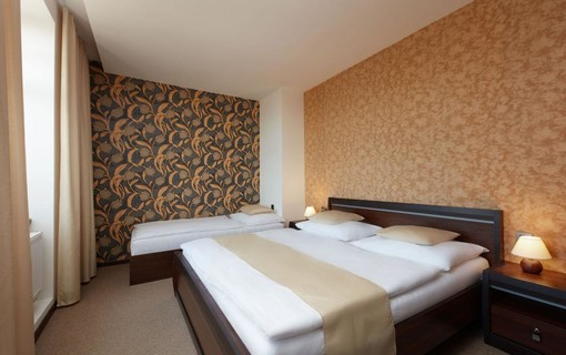 Relaxační pobyt-Hotel Slunný dvůr 1151142509
