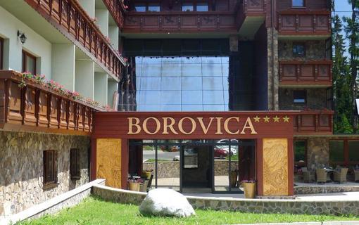 Wellness Hotel Borovica 1154913273