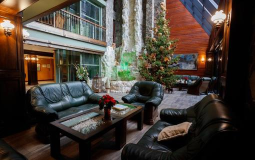 Wellness Hotel Borovica 1154913255