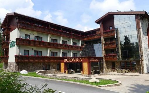 Láska hory přenáší-Wellness Hotel Borovica 1154913223