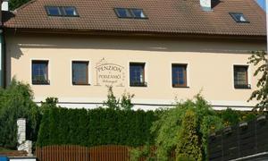 Penzion V Podzámčí 1133359203