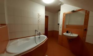 Penzion V Podzámčí Koupelna apart.