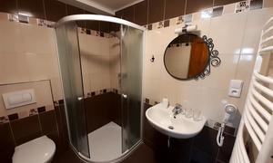 Penzion V Podzámčí Koupelna pok.4
