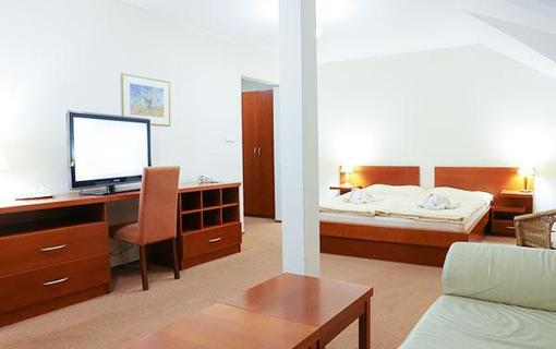 Hotel Plejsy 1145190963