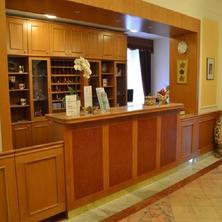 HOTEL ELIŠKA Karlovy Vary 33596684