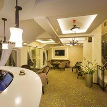 Hotel Dvorana Karlovy Vary 33599220