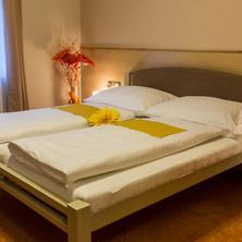 Dvoulůžkový pokoj s manželskou postelí (double room)