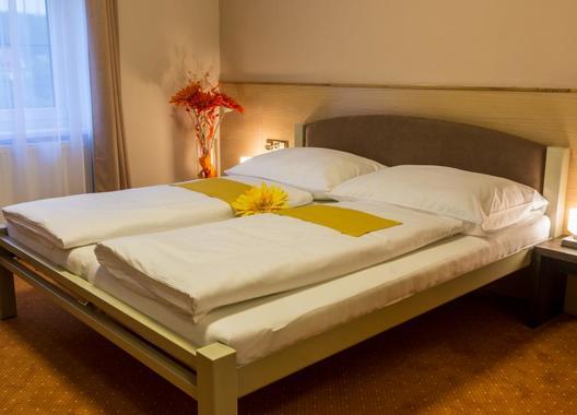 Hotel-Lužnice-1