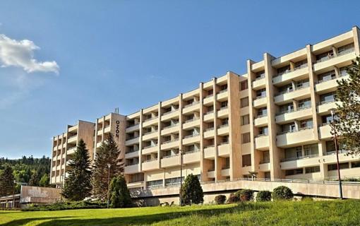 Ozdravný pobyt ve všední dny-Hotel Ozón 1154918559