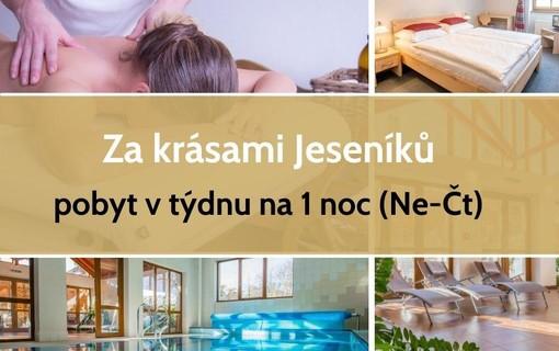 Za krásami Jeseníků s wellness a polopenzí na 1 noc ve všední dny-Hotel a Penzion Praděd Thamm 1156625635