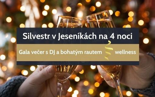 Silvestr v Jeseníkách na 4 noci-Hotel a Penzion Praděd Thamm 1156625645