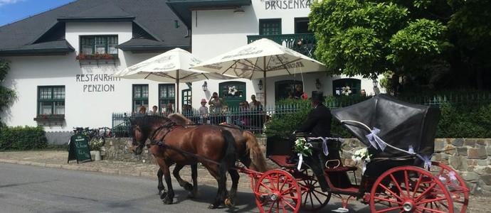 BRUSENKA Restaurant a pension Brusné 1133374367