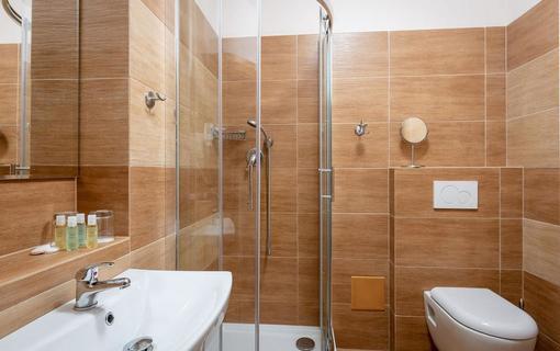 Wellness hotel Ondrášův dvůr 1154719243