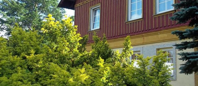 Pension Familia Harrachov 1113830048