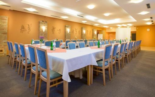 Hotel Skanzen 1150766237