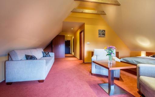Hotel Skanzen 1150766227