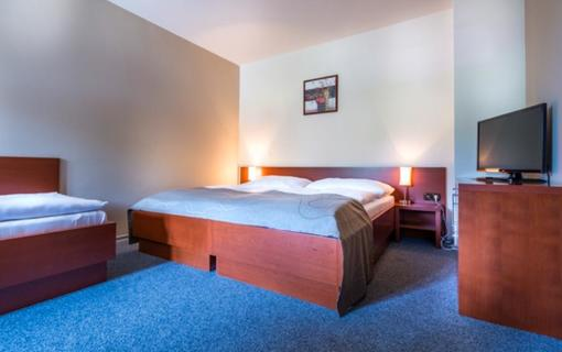 Hotel Skanzen 1150766219