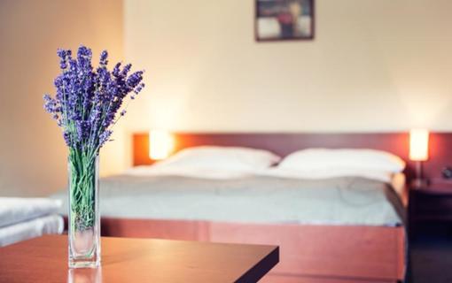 Hotel Skanzen 1150766223