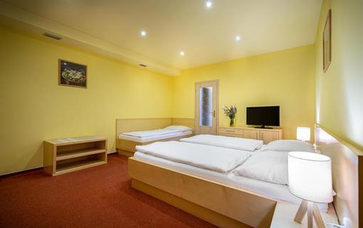 Hotel Skanzen 1150766225
