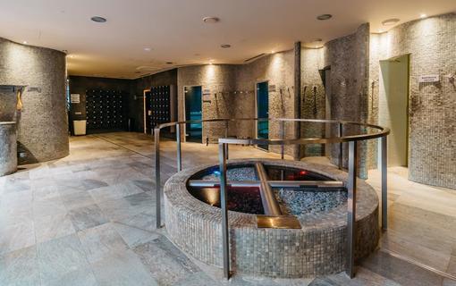Maximus Resort Hotel Brno 1155977679