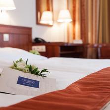 OLYMPIA hotel Mariánské Lázně 42324106