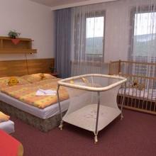 Hotel Čertův mlýn Železná Ruda 1133394839