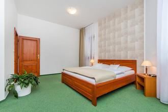 Wellness hotel Horal Rožnov pod Radhoštěm 43848004