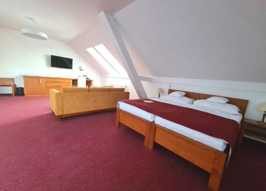 Wellness-&-Spa-hotel-Horal-9