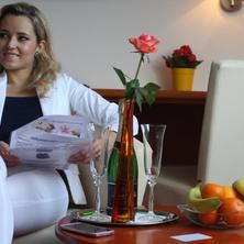 Wellness hotel Horal-Rožnov pod Radhoštěm-pobyt-Silvestrovský pobyt v Beskydech