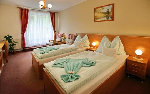 SPA HOTEL DIANA Dvoulůžkový pokoj Klasik, SPA HOTEL DIANA, Františkovy Lázně