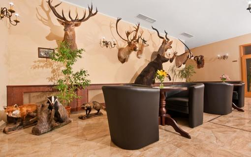 SPA HOTEL DIANA Foyer