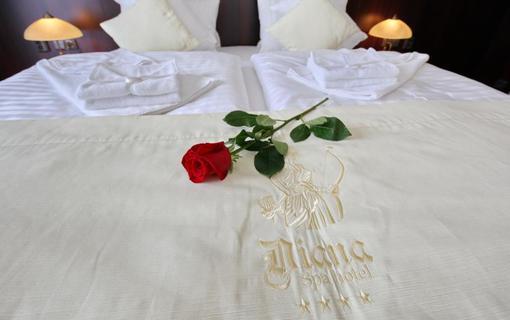 SPA HOTEL DIANA Jednolůžkový pokoj de Luxe, SPA HOTEL DIANA, Františkovy Lázně