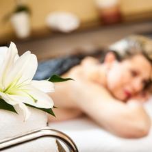 SPA HOTEL DIANA-Františkovy Lázně-pobyt-Komplexní lázeňský pobyt Diana