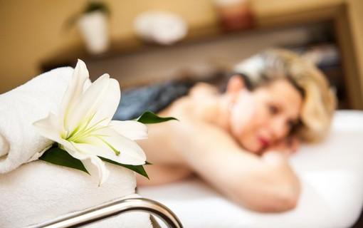 Lázně s voucherem-SPA HOTEL DIANA 1156366417