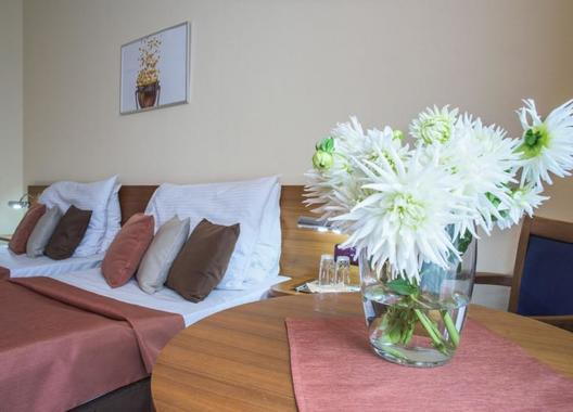 Wellness-Hotel-Opava-12