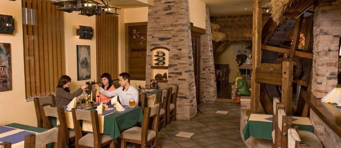 Hotel Jelínkova vila Velké Meziříčí 36812656