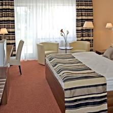 Hotel Termal Mušov Pasohlávky 37509216