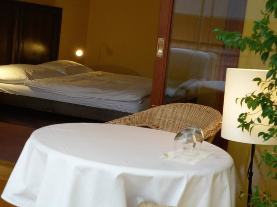 Hotel Antoň 1133414841