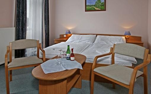 Léčebný pobyt v Hotelu Paris na 14 nocí-Hotel Paris 1154287081