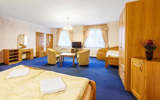 Hotel Lions 1151259669