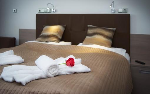 HOTEL AURA PRAHA design & garden wellness pool 1154287601